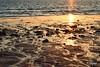 En la orilla... (ZAP.M) Tags: orilla atardecer arena reflejos sanctipetri chiclana cádiz andalucía españa zapm mpazdelcerro flickr