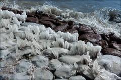 Frozen art (Ciao Anita!) Tags: hoorn noordholland nederland netherlands olanda ijsselmeer ijs ice ghiaccio theperfectphotographer