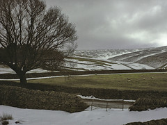 Chilly outlook (Blue Pelican) Tags: minox dcc51 digital camera moorfield glossop derbyshire tree hills fields snow clouds