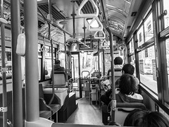 Japan Random Scenes (JustTravellingSolo) Tags: people kids animals blackandwhite photowalk streets kansai outdoors sky nara kobe sakura trains bus