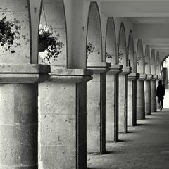 Prinzipalmarkt (Bernhardt Franz) Tags: münster prinzipalmarkt historic buildings column blumenkübel planter bogengang arcade archway blackandwhite bw street person nikon architecture
