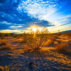 Arizona Sunset (Thenotablenobody) Tags: desert desertvibes sky skyporn sunsetporn