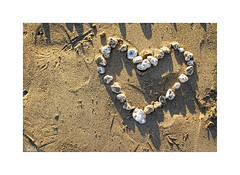 ♡... (ángel mateo) Tags: ángelmartínmateo ángelmateo cádiz andalucía españa playa lacaleta andalusia spain ♡ corazón arena piedras sombra amor sanvalentín heart sand stones shadow beach love valentinesday