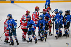 Bled 2018_6D__MG_0054_065 (icehockey.today) Tags: bled2018 bled radovljica slovenia si