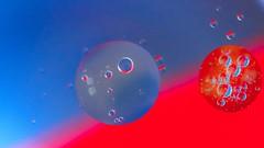 Circles (YᗩSᗰIᘉᗴ HᗴᘉS +15 000 000 thx) Tags: circles red blue macro water oil hensyasmine namur belgium europa aaa namuroise look photo friends be wow yasminehens interest intersting eu fr greatphotographers lanamuroise