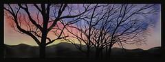 Carbondale Sunrise (bellydanser) Tags: art fineart watercolor painting sunrise sky trees carbondale colorado rockies