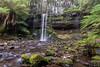 DSC_1169 (Adam Solly Photography) Tags: waterfall tasmania russell falls mt field tasmanianwaterfalls