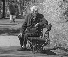La pauvreté - The poor man (p.franche Visit(ez) mes expositions) Tags: streetshot snapshot poor man pauvre bench banc panasonic lumix fz200 bruxellesbrussel brussels belgium belgique belgïe europe pfranche pascalfranche hdr dxo phototab flickrelite schaerbeek schaarbeek yourbestoftoday parcjosaphat josaphatpark people men homme human skancheli monochrome noiretblanc blackandwhite zwartwit blanconegro schwarzweis μαύροκαιάσπρο inbiancoenero 白黒 黑白 чернобелоеизображение svartochvitt أبيضوأسود mustavalkoinen שוואַרץאוןווייַס bestofbw