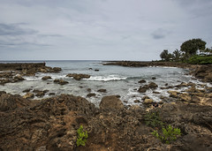 Shark Cove II (fantommst) Tags: lisaridings fantommst shark cove low tide oahu hawaii pupukea beach snorkeling sea ocean us usa hi rocky volcanic reef aquatic northshore