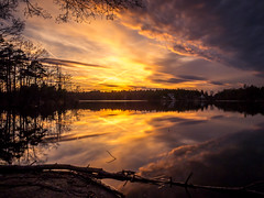 Spring Sunset (Jens Haggren) Tags: sunset sun evening sky clouds colours water reflections trees nature view landscape longexposure le nacka sweden olympus em1 jenshaggren