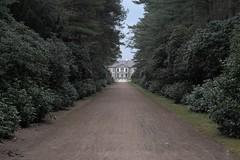 Oranienbaum (Tho. Z) Tags: oranienbaum sachsenanhalt park lustgarten dessau gartenreichdessauwörlitz bushes shrubs gebüsch greenery