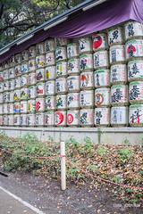 Sake Barrels (DanaMichelle309) Tags: japan meijijingushrine shibuya shrine tokyo travel shibuyaku tōkyōto jp