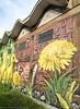 Mauerblümchen / Wallflower (photodesignette) Tags: graffiti löwenzahn dandelion küken duckling berlin mural