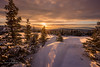 Gold in the hills (Traylor Photography) Tags: alaska glennalps landscape sunset nature hillside flattop mountain colors anchorage unitedstates us