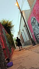 010 of 365 - Back alley (Weils Piuk) Tags: photoblog365 back alley color cat man sunset cables selfie weils puik duba feik