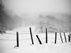 Pré d'hiver. (steph20_2) Tags: panasonic gh4 m43 lumix 20mm monochrome monochrom montagne mountain puydedôme auvergne winter hiver neige noir noiretblanc ngc blanc black bw white skanchelli