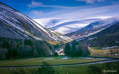 Stanhope (Peeblespair) Tags: peeblespairphotography stanhope scotland borders scottishborders mountains snow winterscene scotlandwinter stonecottage tranquil sheep valley
