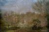 16 marzo 2018, Roma, parco della Caffarella - come in un dipinto... (adrianaaprati) Tags: park landscape ruralhouse trees flowering sky bird flight egret painting texture lenabemannaj farmhouse march
