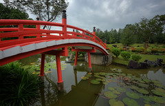 Red Bridge Garden (henriksundholm.com) Tags: landscape daylight garden park bridge pond lake water reflections shadows lily lilies grass japanese chinese jurongeast chinesegarden hdr singapore southeast asia