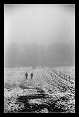FILM - Figures in a landscape (fishyfish_arcade) Tags: analogphotography bw blackwhite blackandwhite filmphotography filmisnotdead istillshootfilm ilfordhp5plus monochrome nikkor2880f3556afd nikonf70 analogcamera film mono snow mist winter