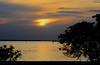 Charlotte Harbor Sunset; Punta Gorda, FL, Ponce de Leon Park [Lou Feltz] (deserttoad) Tags: nature people park florida heron behavior sunset reflection silhouette