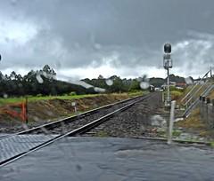 Wet Wingham (damoN475photos) Tags: wet wingham brisbane sydney rail line 2018