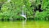 Waterfall Tobalina Pedrosa (jorgecarvalhinho) Tags: cascada waterfall tobalina pedrosa burgos spain