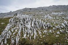 Roca peinada (SantiMB.Photos) Tags: 2blog 2tumblr 2ig lizarraga andía urbasa navarra rocas rock geo:lat=4286380577 geo:lon=204389289 geotagged lizarragaergoiena españa esp
