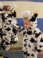 Sad cow wants to be double cow (quinn.anya) Tags: paul toddler cow costume farm habitot