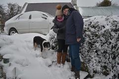 DSC_8018 (seustace2003) Tags: baile átha cliath ireland irlanda ierland irlande dublino dublin éire glencullen gleann cuilinn st patricks day zima winter sneachta sneg snijeg neve neige inverno hiver geimhreadh