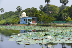 Kanchipuram P1260458 (Phil @ Delfryn Design) Tags: india2018
