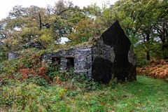 House taken by the forest (Nelleke C) Tags: 2017 countymayo erriffwood abandoned holiday house huis ierland ireland landscape landschap loofbos vakantie woodland
