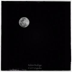 Moonlit sky (Mister Blur) Tags: full moon luna llena uaymitún yucatán méxico blackandwhite bw blancoynegro happy monochrome monday moonlit sky spring primavera snapseed nikon d7100 rubén rodrigo fotografía