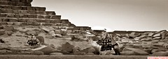 Camel's Photo-opp (DelioTO) Tags: 6x17 120 1995 antiquities aph09 architecture blackwhite cairo city curved egypt f317 holiday landscape nile panoramic pinhole trip