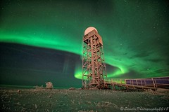 OCT_8536s (savillent) Tags: aurora borealis northern lights north arctic landscape night photography nocturne nocturnal dark mysterious ufo alien sky skies stars universe astrology snow winter ice road freeze savillent francis anderson red green purple blue neon change lunar nikon travel nature discover tuktoyaktuk northwest territories nwt nt xfiles dream world canada climate black acdc pink floyd polar cold april 2018