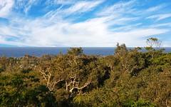 2/38 Martinelli Avenue, Banora Point NSW