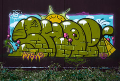 HH-Graffiti 3615 (cmdpirx) Tags: hamburg germany graffiti spray can street art hiphop reclaim your city aerosol paint colour mural piece throwup bombing painting fatcap style character chari farbe spraydose crew kru artist outline wallporn train benching panel wholecar