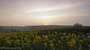 Bean Sunset. (Tim Walton Photography.) Tags: bean kent sunset view clouds hills rapeseed fields tree sonya57 timwaltonphotograohy