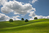 A New Beginning (jojo (imagesofdream)) Tags: california kern county