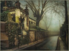 """from the series """"Walks in Portugal"""". Foggy day in Sintra (iPhoneX) (odinvadim) Tags: mytravelgram iphoneart iphone iphoneography iphoneonly forest specialist snapseed evening textures painterlymobileart travel editmaster landscape textured"""