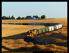 ewg-mp34xyz (funnelfan) Tags: train railroad railway shortline locomotive pnw pacificnorthwest eastern washington gateway ewg cw centralwashington wheat grain field farmstead sd40t2 c408 scurve mondovi