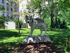Sculpture, McGill University, Montreal, Quebec, Canada (duaneschermerhorn) Tags: sculpture outdoorart artwork art outdoorsculpture publicart mcgill mcgilluniversity campus
