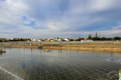Aquaculture 1407 (_Rjc9666_) Tags: acuicultura algarve aquacultura aquaculture clouds coastline colors nikond5100 olhão places portugal riaformosa sky weather net ©ruijorge9666 quelfes faro pt 2086 1407
