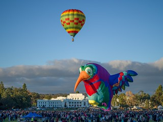 Canberra Balloon Spectacular 2018 - 10 - Parkes - ACT - Australia - 20180310 @ 07:27
