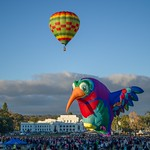 Canberra Balloon Spectacular 2018 - 10 - Parkes - ACT - Australia - 20180310 @ 07:27 thumbnail