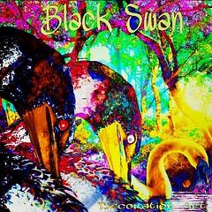 Black Swan  Painting & Decoration Art  以前お絵描きした作品を、編集加工しました。  https://www.pixiv.net/member_illust.php?mode=medium&illust_id=67865940  Youtube ヨリ  https://youtu.be/qQYSf_8o6Dg  http://www.google.co.jp/url?q=https://m.youtube.com/watch%3Fv%3DOLFd0Q-n2so&sa= (nodasanta) Tags: instagramapp square squareformat iphoneography uploaded:by=instagram lofi
