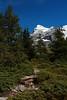 On Trail (EP Diederiks) Tags: switzerland schweiz alpen alps mountain berg swiss grindelwald kleine scheidegg bern berner oberland bernese trees trail hiking wandern wanderweg eiger nordwand snow rock gletscher glacier wengen mönch alpine summer sommer blue sky moraine landscape