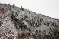 Winter is back March 23, 2018 (kimshand) Tags: winter winterbeauty 4winter novascotia wentworth wentworthvalley nature