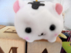 DSC02475 (classroomcamera) Tags: soft animal animals cat cats white black face faces smile smiles small little tiny pink letter letters block blocks wood wooden stand stands standing sit sits sitting fuzzy blur blurry closeup fur furry stuffie stuffies