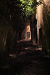 Avignon (updownmo) Tags: picture canon historical scary empty street france avignon inbetween windows curve buildings shadow natural nature leafs light photography photo image nightphotography alley alleyways